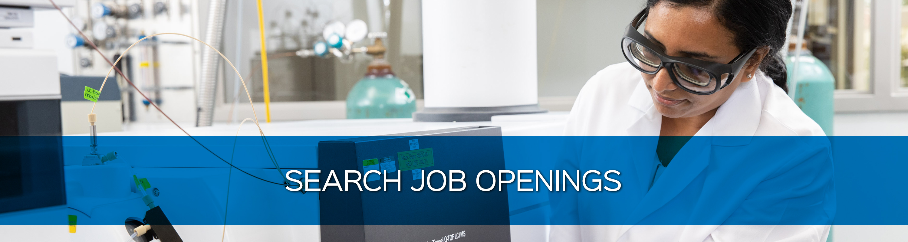 Search Job Openings